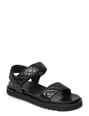 Billi Bi Sandals 2756 Shoes Summer Shoes Flat Sandals Musta Billi Bi BLACK NAPPA 70, Naisten kengät