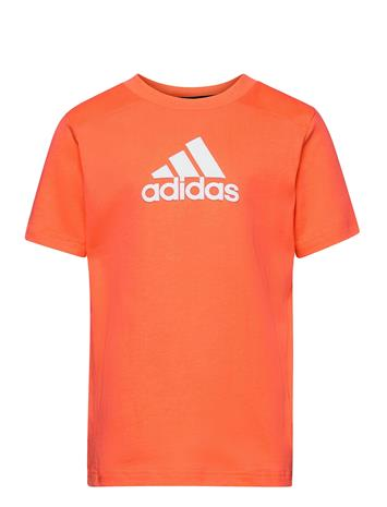 adidas Performance Logo T-Shirt T-shirts Short-sleeved Oranssi Adidas Performance TRUORA/WHITE
