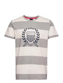 GANT D2. Crest Stripe Ss T-Shirt T-shirts Short-sleeved Harmaa GANT GREY MELANGE