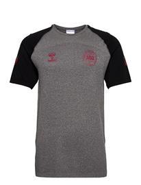 Hummel Dbu Player Pro Seamless Jersey S/S T-shirts Football Shirts Harmaa Hummel DARK GREY MELANGE