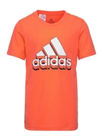 adidas Performance Aeroready Prime T-Shirt T-shirts Short-sleeved Oranssi Adidas Performance TRUORA/WHITE