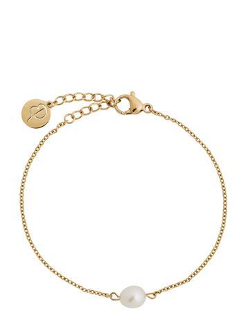 Edblad Perla Bracelet Gold Accessories Jewellery Bracelets Chain Bracelets Kulta Edblad GOLD