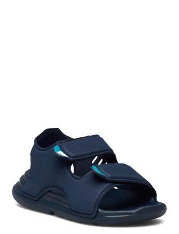 adidas Performance Swim Sandals Shoes Summer Shoes Sandals Sininen Adidas Performance CRENAV/CRENAV/FTWWHT