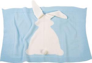 Llorens Blue blanket