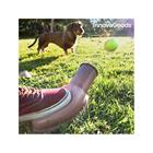 Pallonheitin koiralle