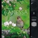 Linnut äänessä (Jan Pedersen), kirja 9789513155599