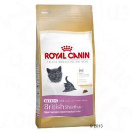 Royal Canin Kitten British Shorthair, 2 kg