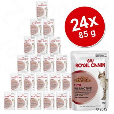 Royal Canin -säästöpakkaus 48 x 85 g - Intense Beauty